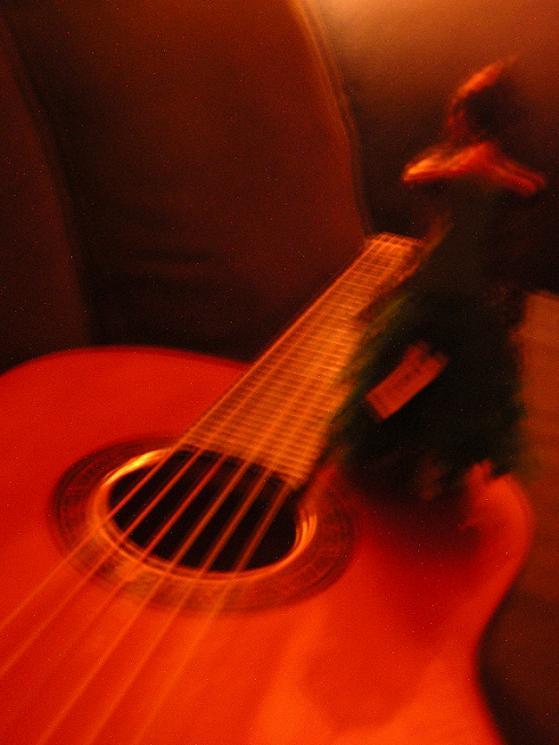 http://upload.wikimedia.org/wikipedia/commons/0/0f/Flamenco04.JPG?uselang=fr