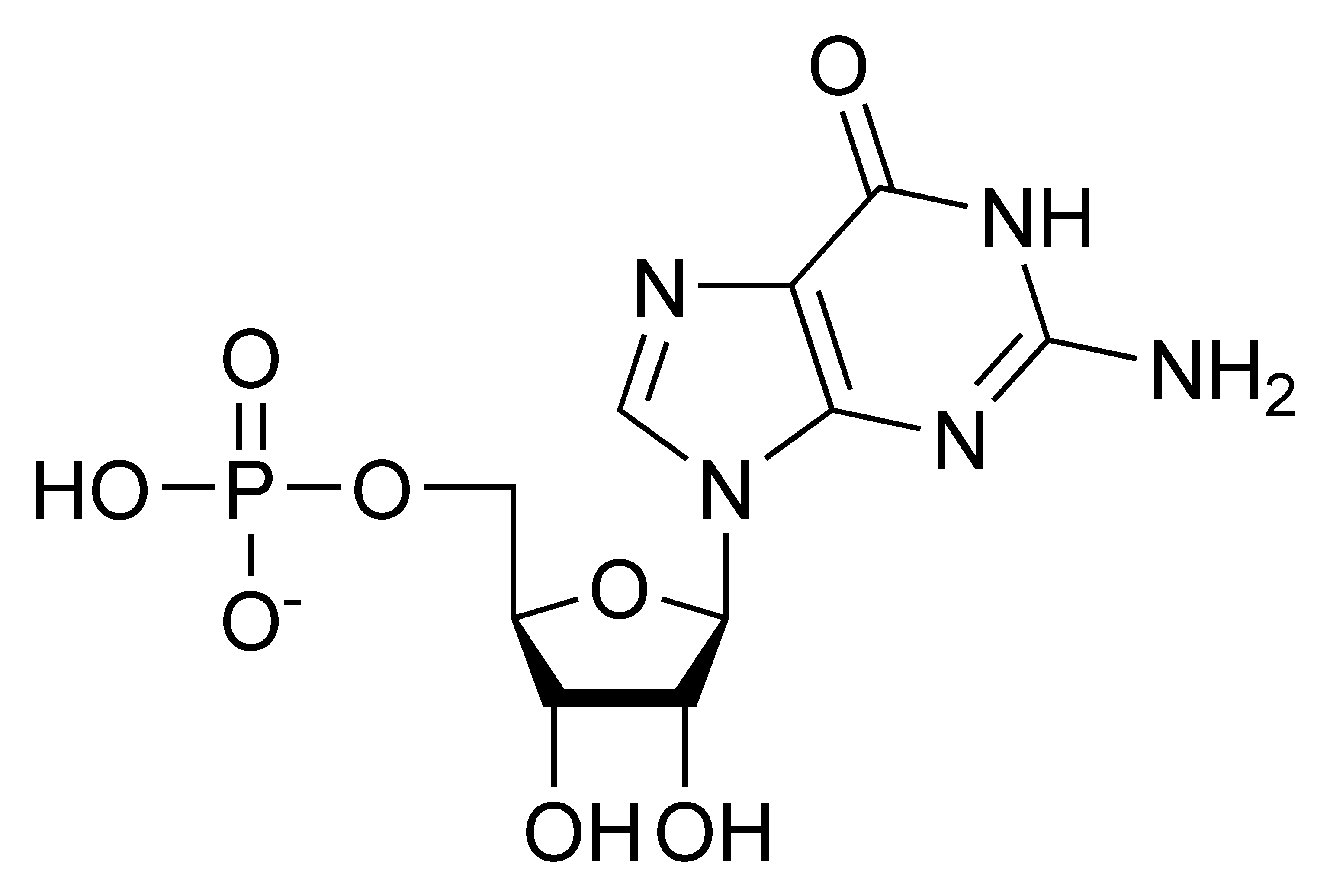 Chemical structure of guanosine monophosphate