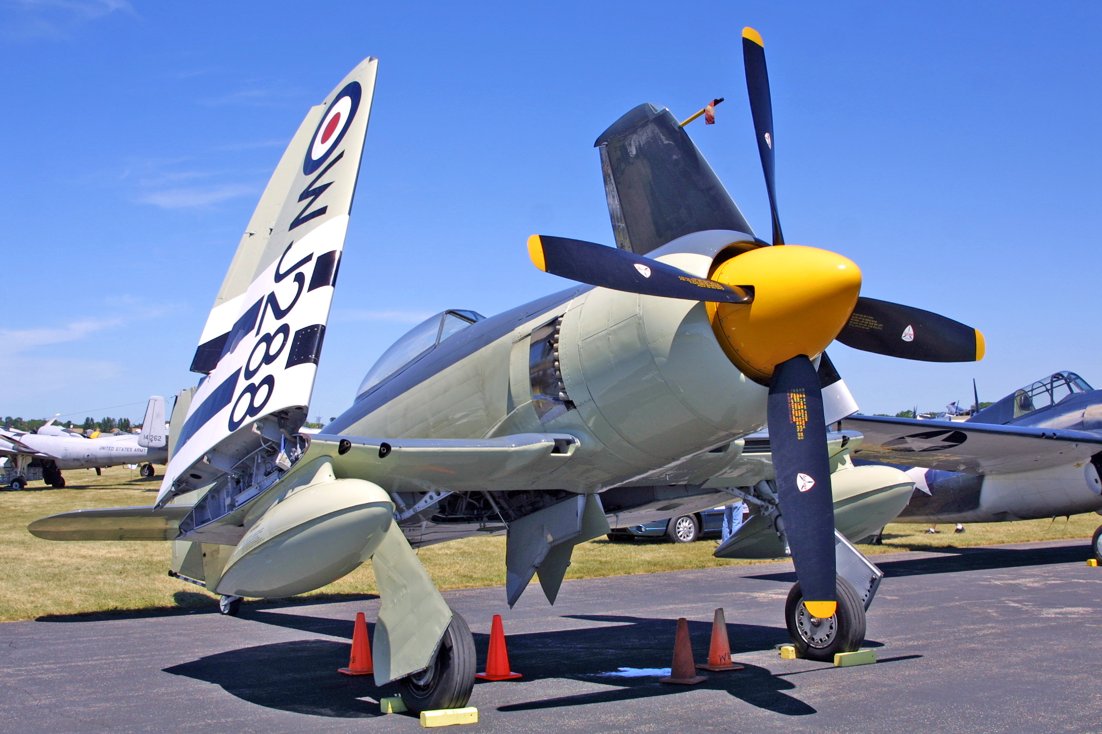 rc plane trainers with List Of Hawker Sea Fury Operators on Chloe Mafia Busts Out Tennis 5986835 additionally Chloe Mafia Busts Out Tennis 5986835 also Rc Servos in addition Details further FMS 980mm P 39 Airacobra Racing RC Plane PNP No Radio p 489.