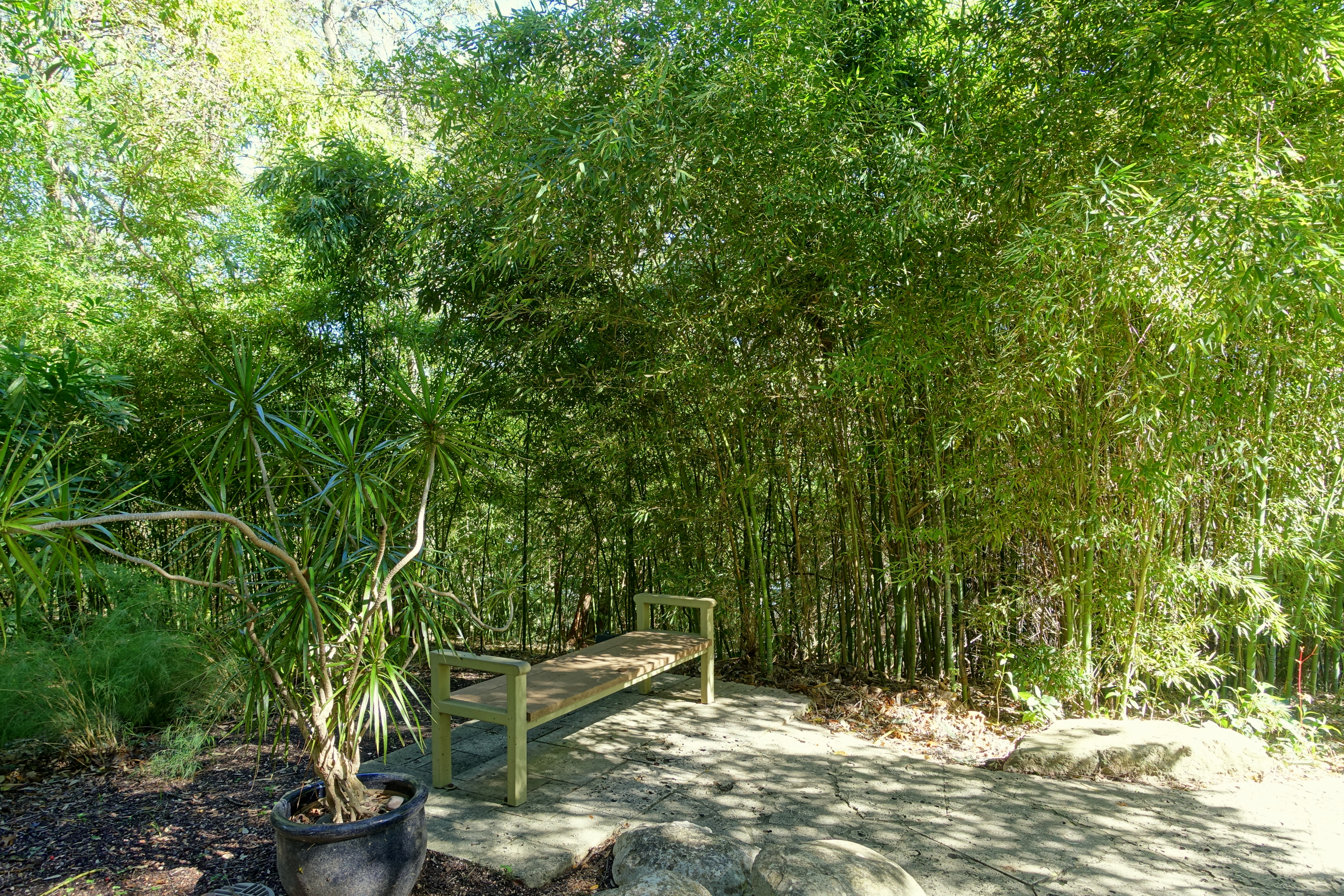 File:Isamu Taniguchi Japanese Garden   Zilker Botanical Garden   Austin,  Texas   DSC09039