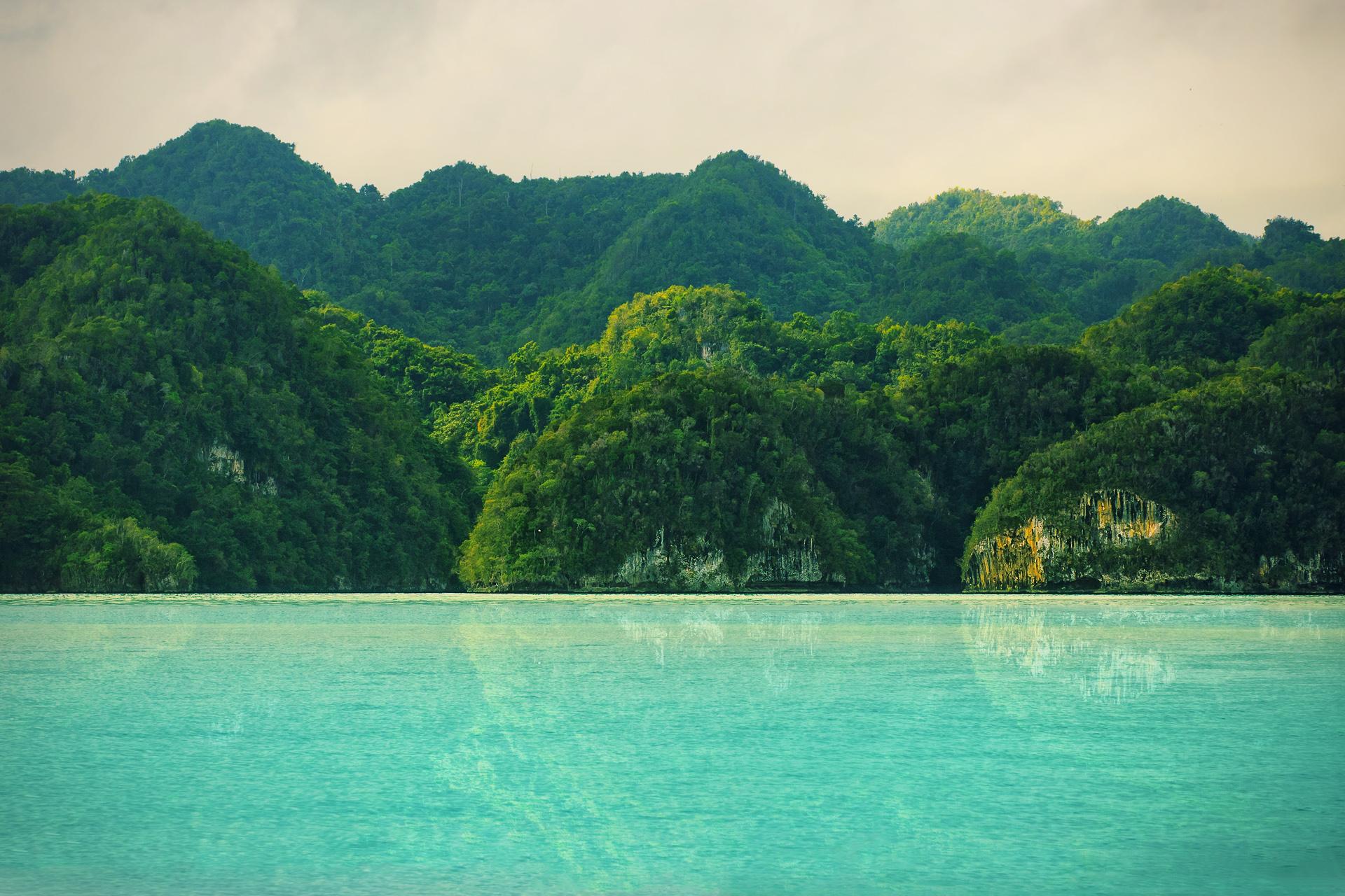 Depiction of Parque nacional Los Haitises