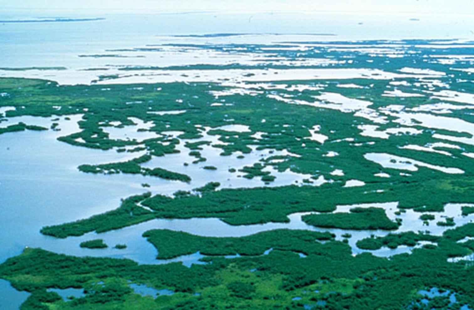 Florida Keys Top  Beaches