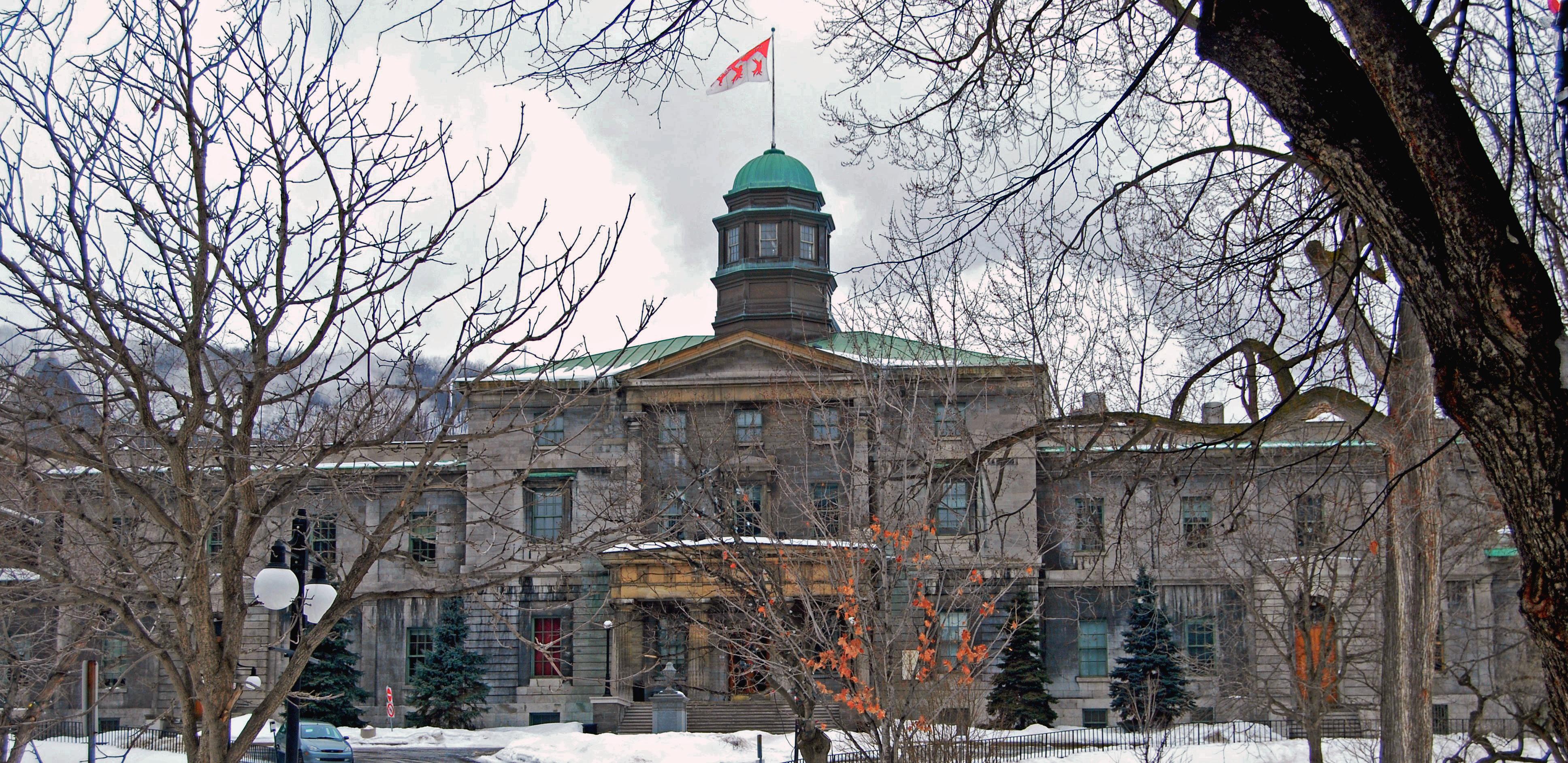 image of McGill University