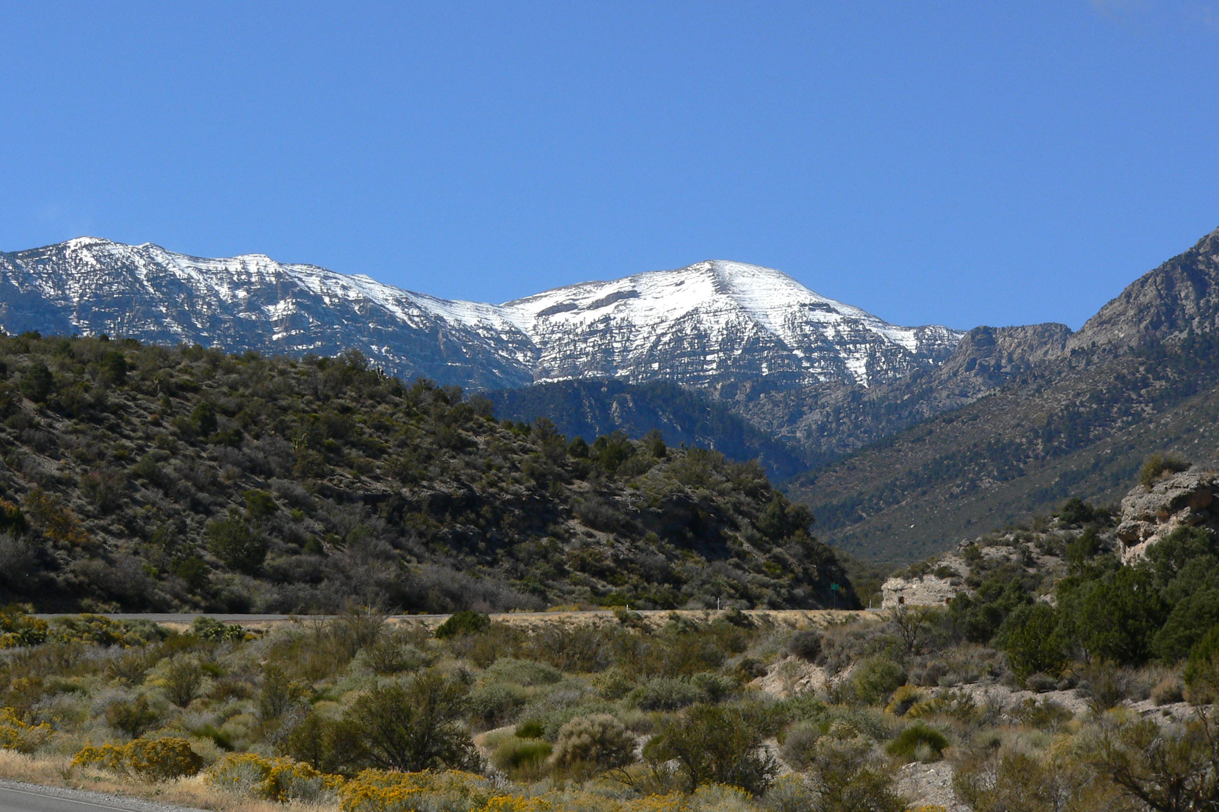 Mount Charleston is a great contrast for those who want to get away from the desert scene for a day.