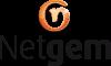 Netgem Logo.png