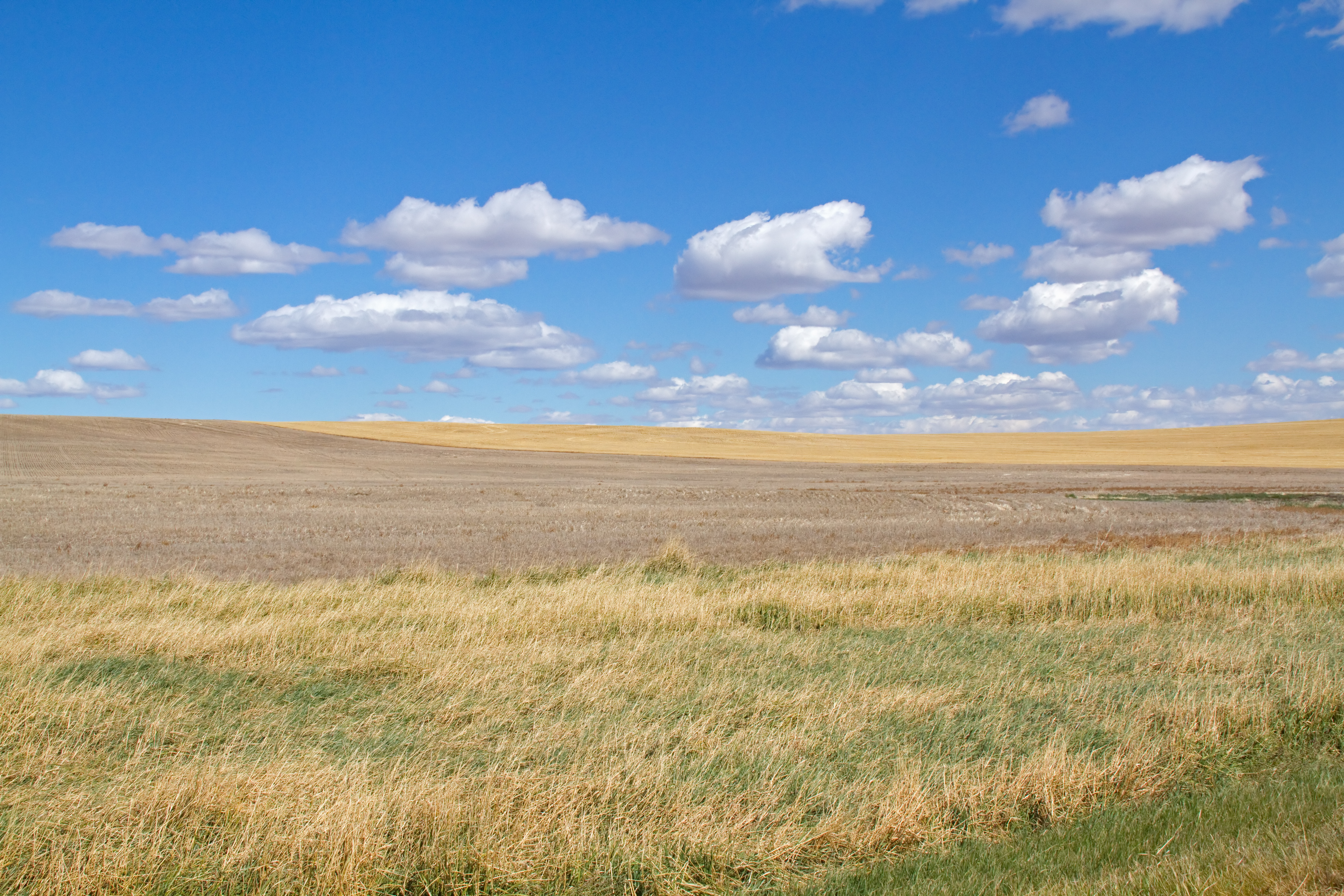 File open plains 8037096148 jpg for Picture great