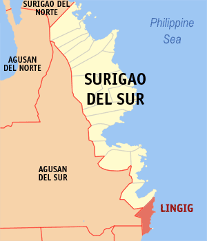 Map of Surigao del Sur showing the location of Lingig