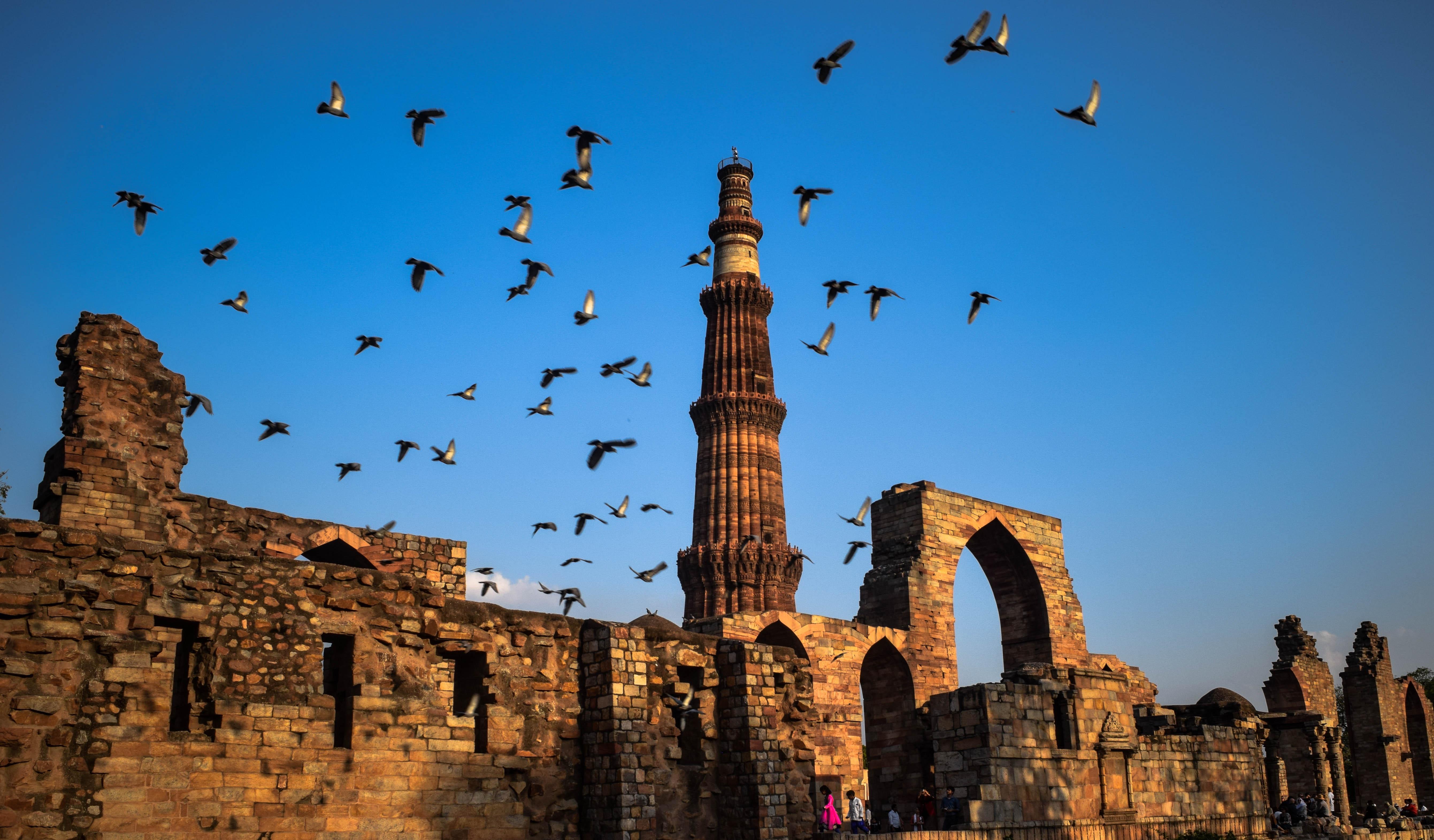 Qutub Minar Complex, New Delhi: History, Guide & Trip Planner 2020 6