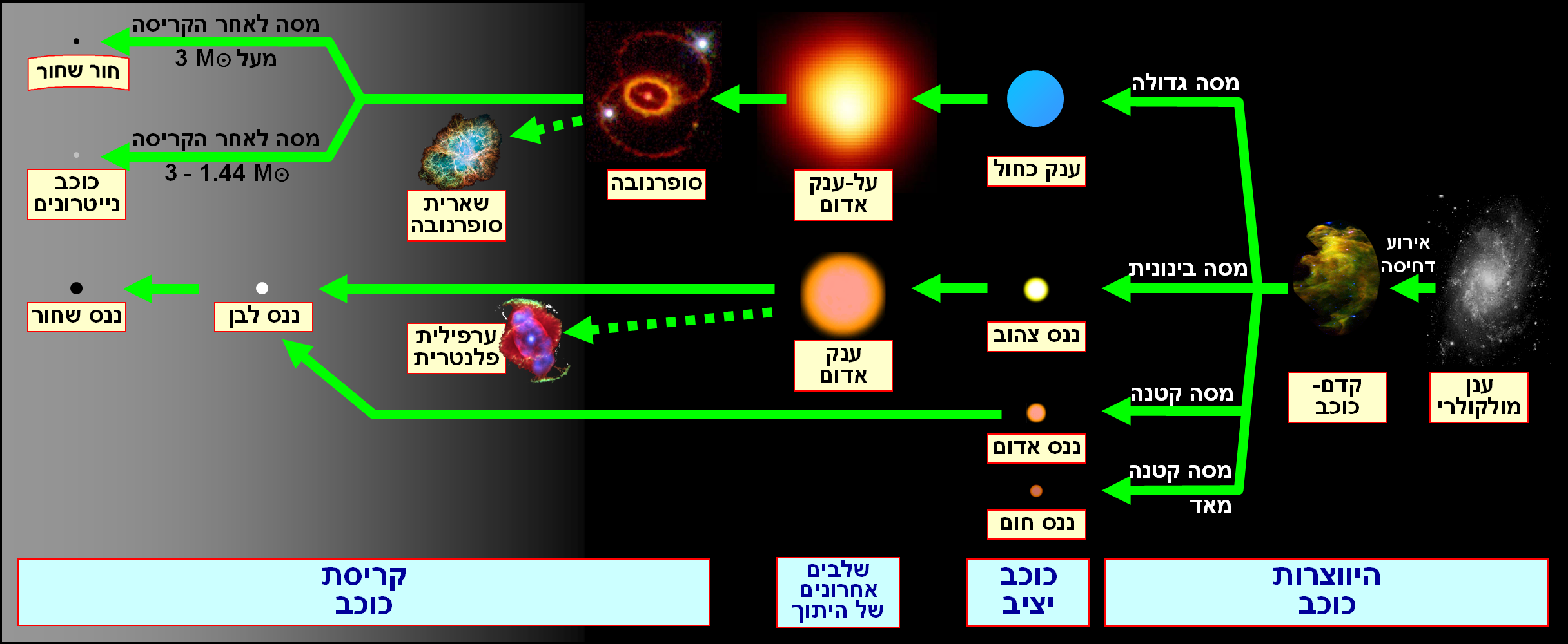 worksheet Stellar Evolution Worksheet stellar evolution hebrew png image edited from httpsupload wikimedia orgwikipediacommons00fstellar png