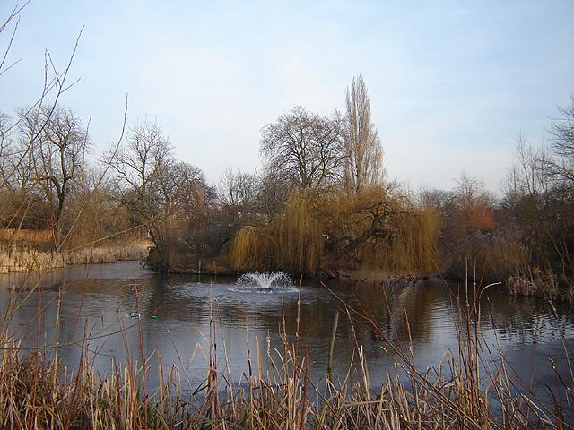 Hackney Brook Wikipedia