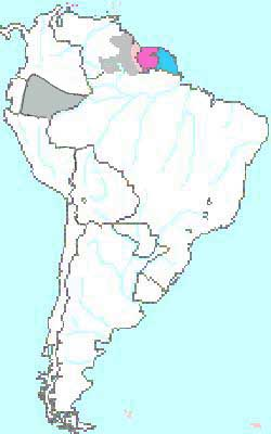 Il Sudamerica nel 1884