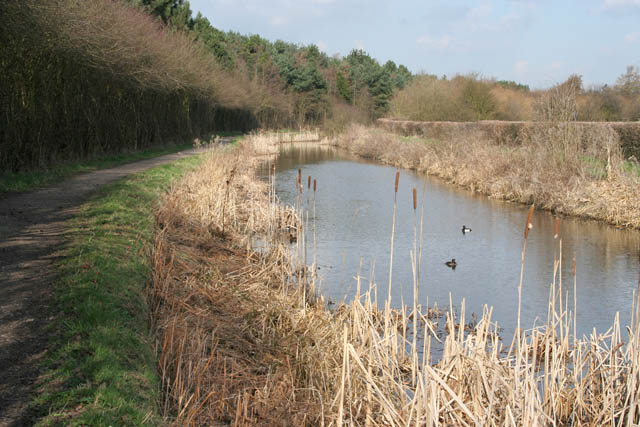 The Nottingham Canal below Cossall - geograph.org.uk - 1198395