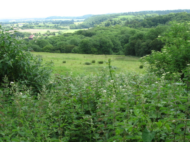 Towards Buriton from Queen Elizabeth Country Park - geograph.org.uk - 1360307