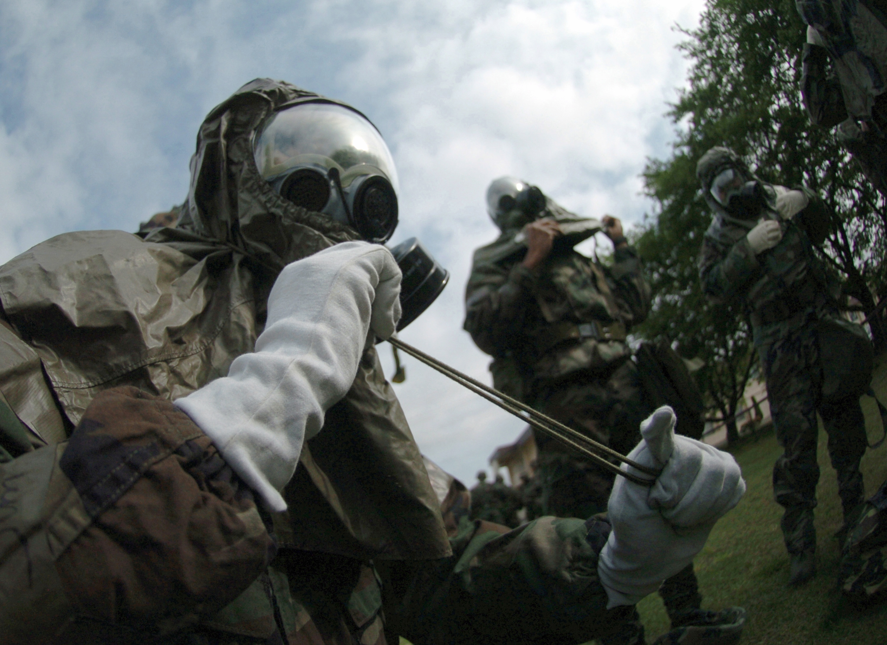 Image Result For Training For Esa