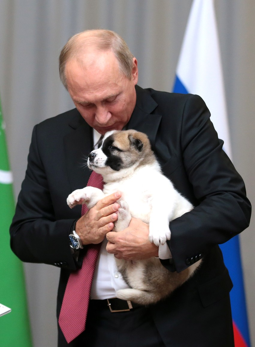 Pets of Vladimir Putin - Wikipedia