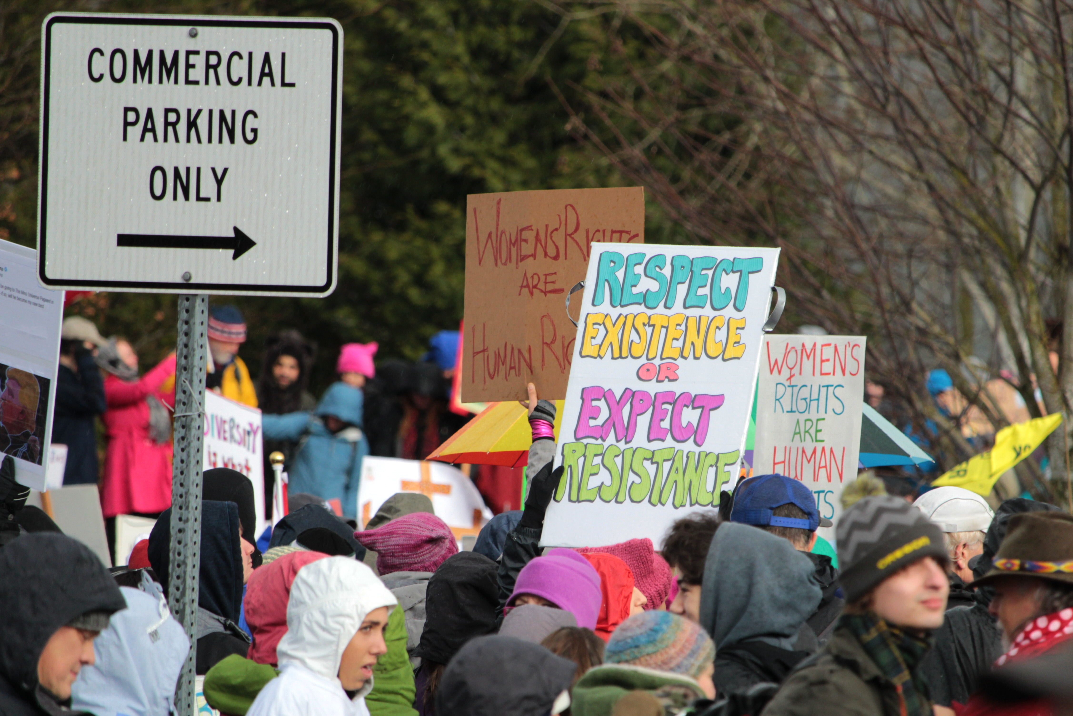 File:Women's March Eugene, Oregon - 12 jpg - Wikimedia Commons