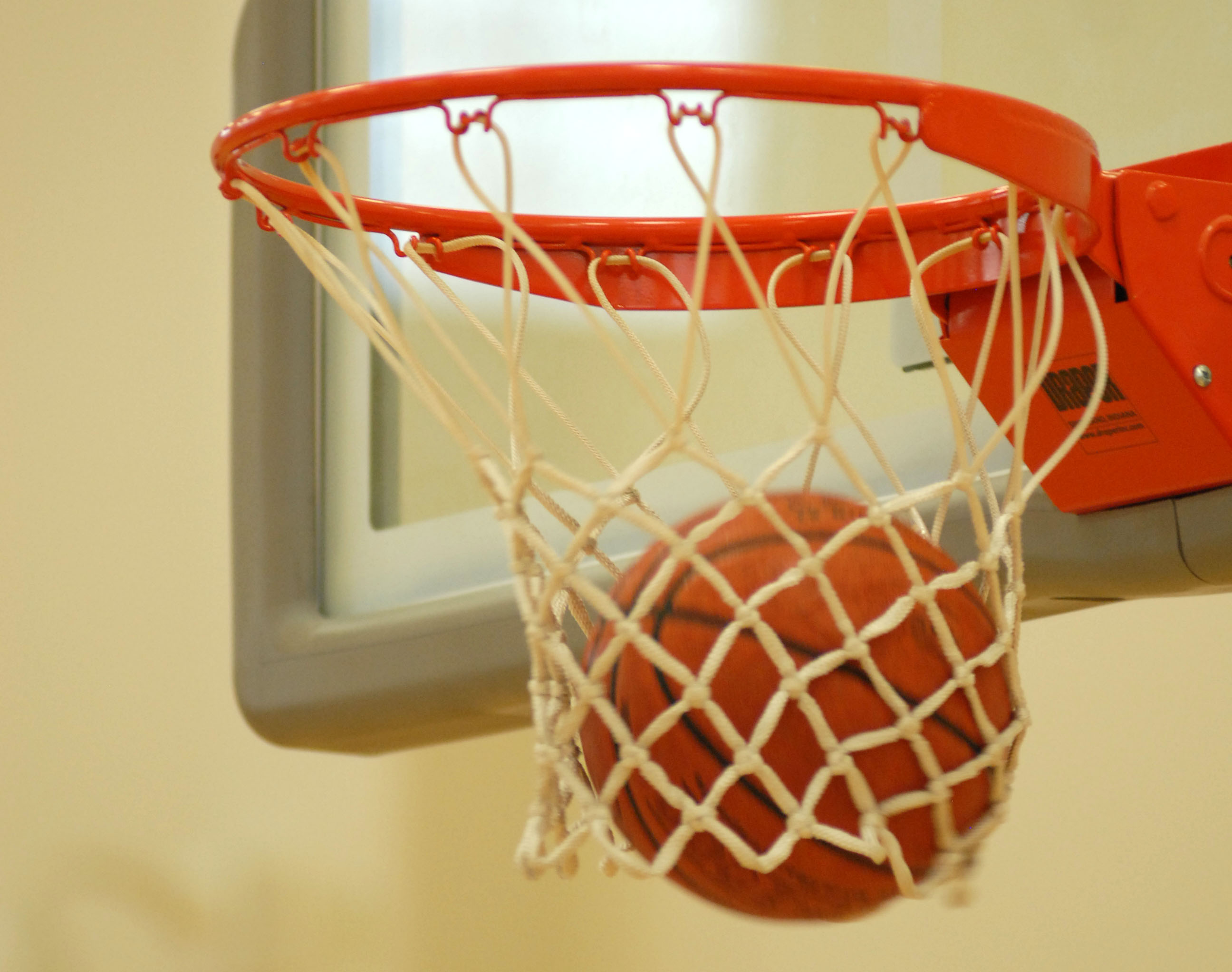 Image result for Basketball going through the net
