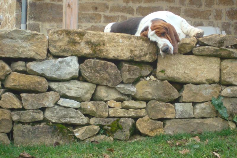 stonewall wiktionary