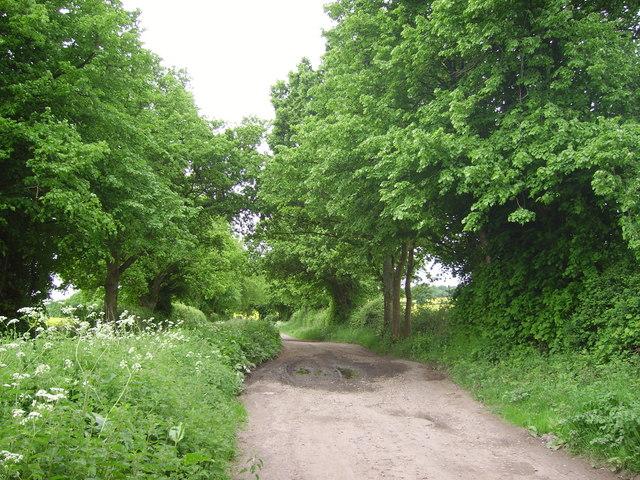 Bridleway near Bradley Farm - geograph.org.uk - 807434