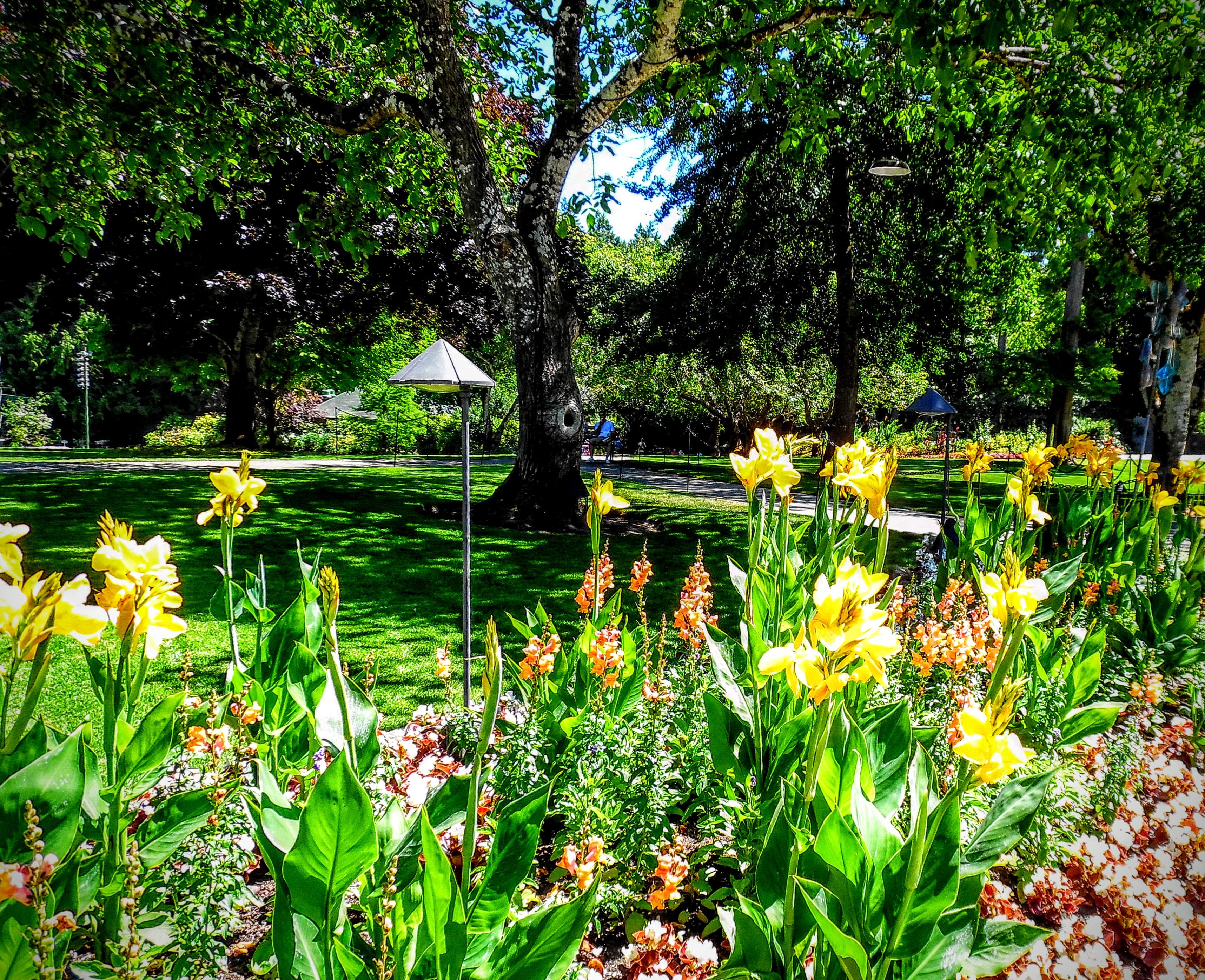 Filebutchart gardens victoria british columbia canada filebutchart gardens victoria british columbia canada 28573353434g altavistaventures Choice Image