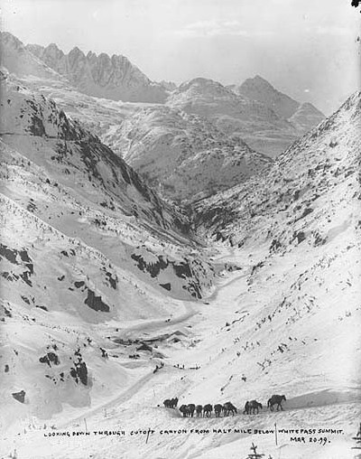File:Cutoff Canyon from the trail below White Pass summit, Alaska, March 20, 1899 (HEGG 509).jpeg