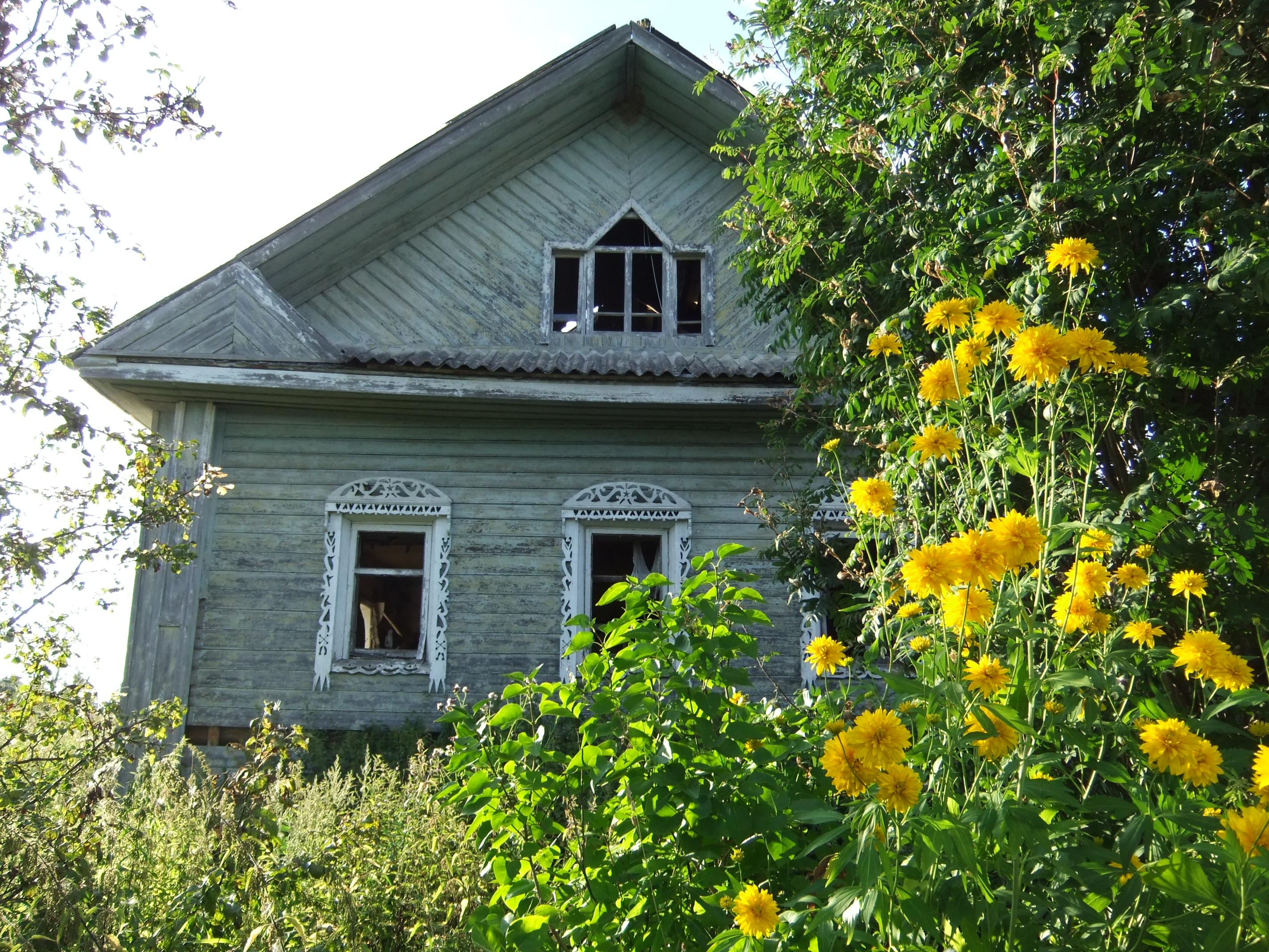 file:dermenino - flowers in front of an abandoned house - dscf5706