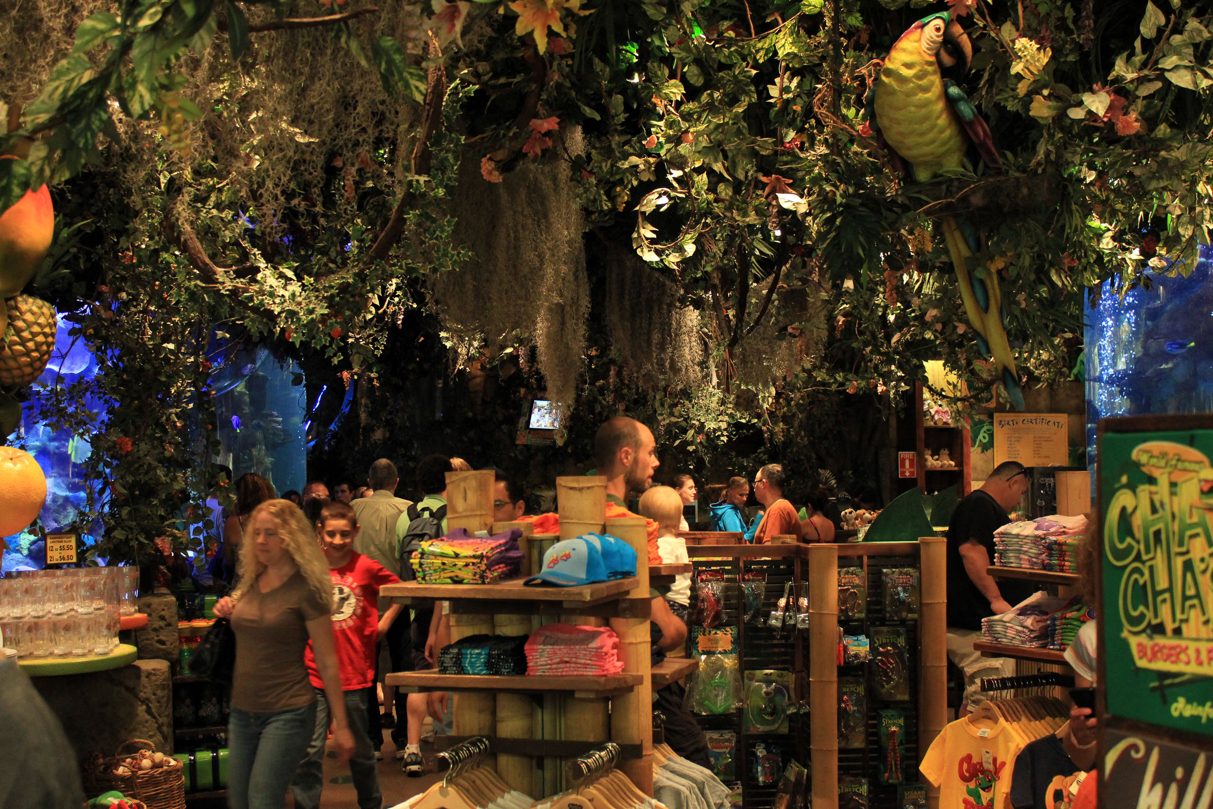 Rainforest Cafe Non Alcoholic Drinks