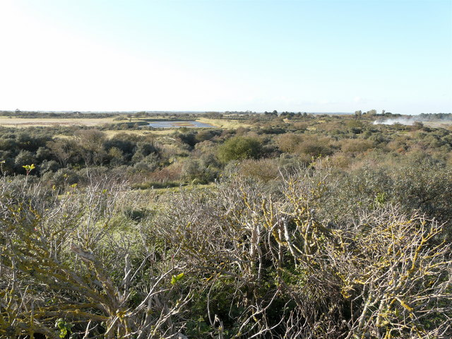 Gibraltar Point National Nature Reserve - geograph.org.uk - 1022055