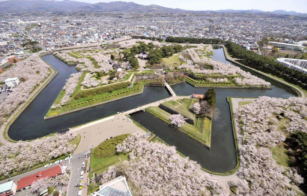 圖片來源:函館市観光局