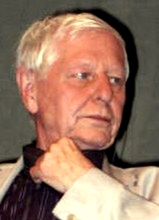 Hans Magnus Enzensberger (cropped)