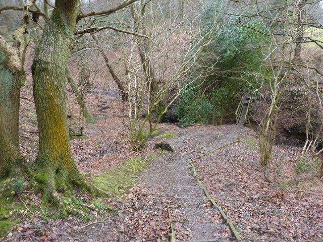 Holmesfield Park Wood - geograph.org.uk - 1712063