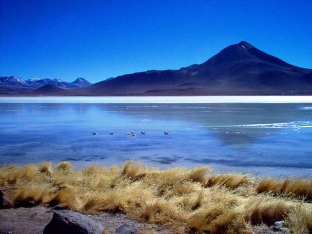 File:Laguna Blanca, Bolivia.jpg - Wikipedia  File:Laguna Bla...