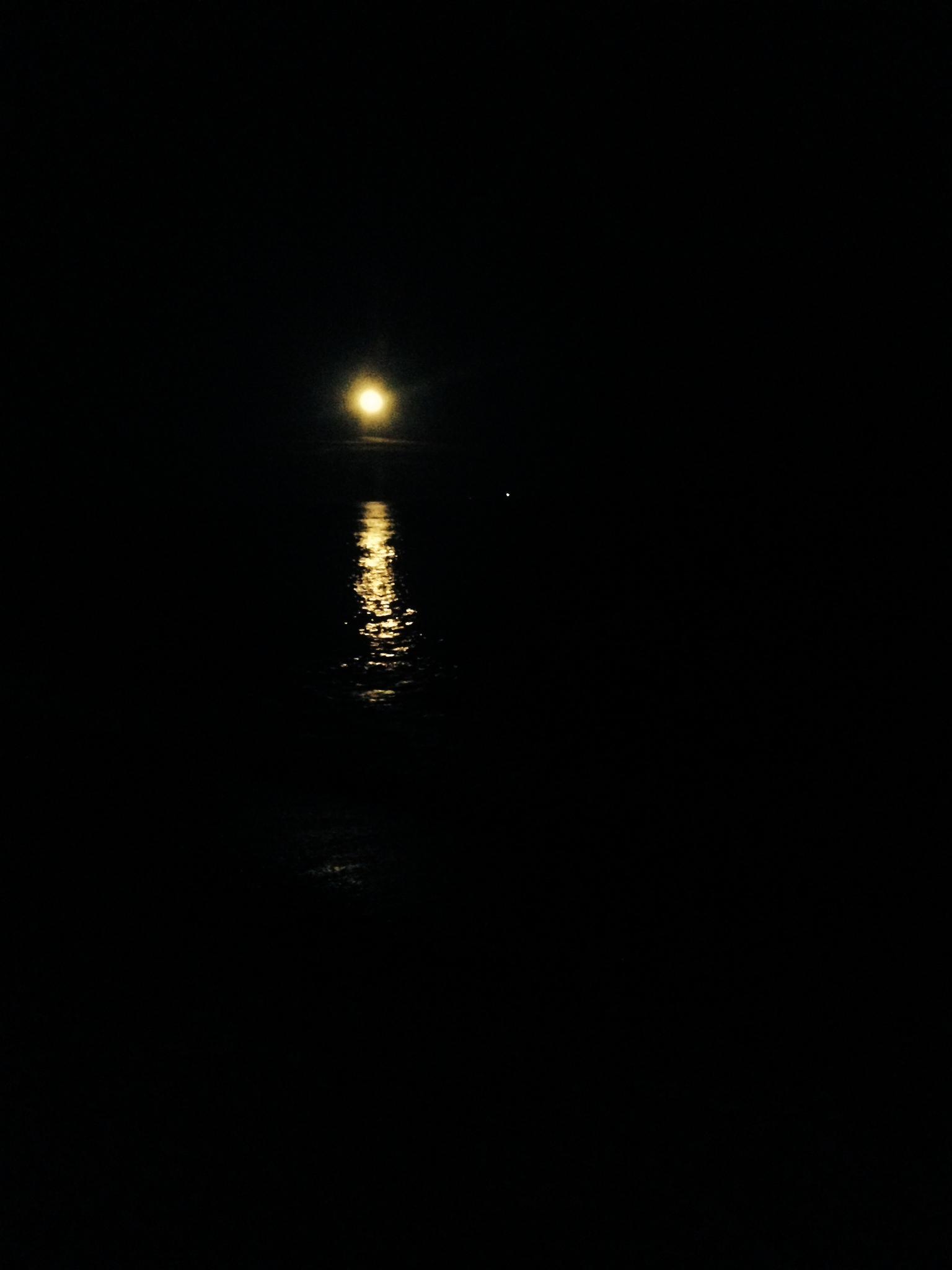 La lluna plena a Taure, dimarts passat, a la platja del Marjal de Les Cases
