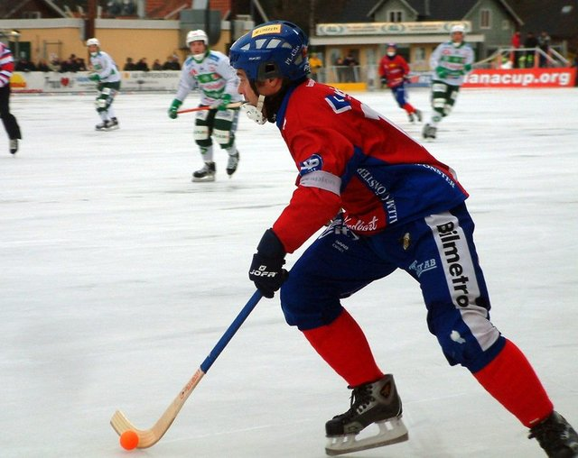 World Cup Bandy