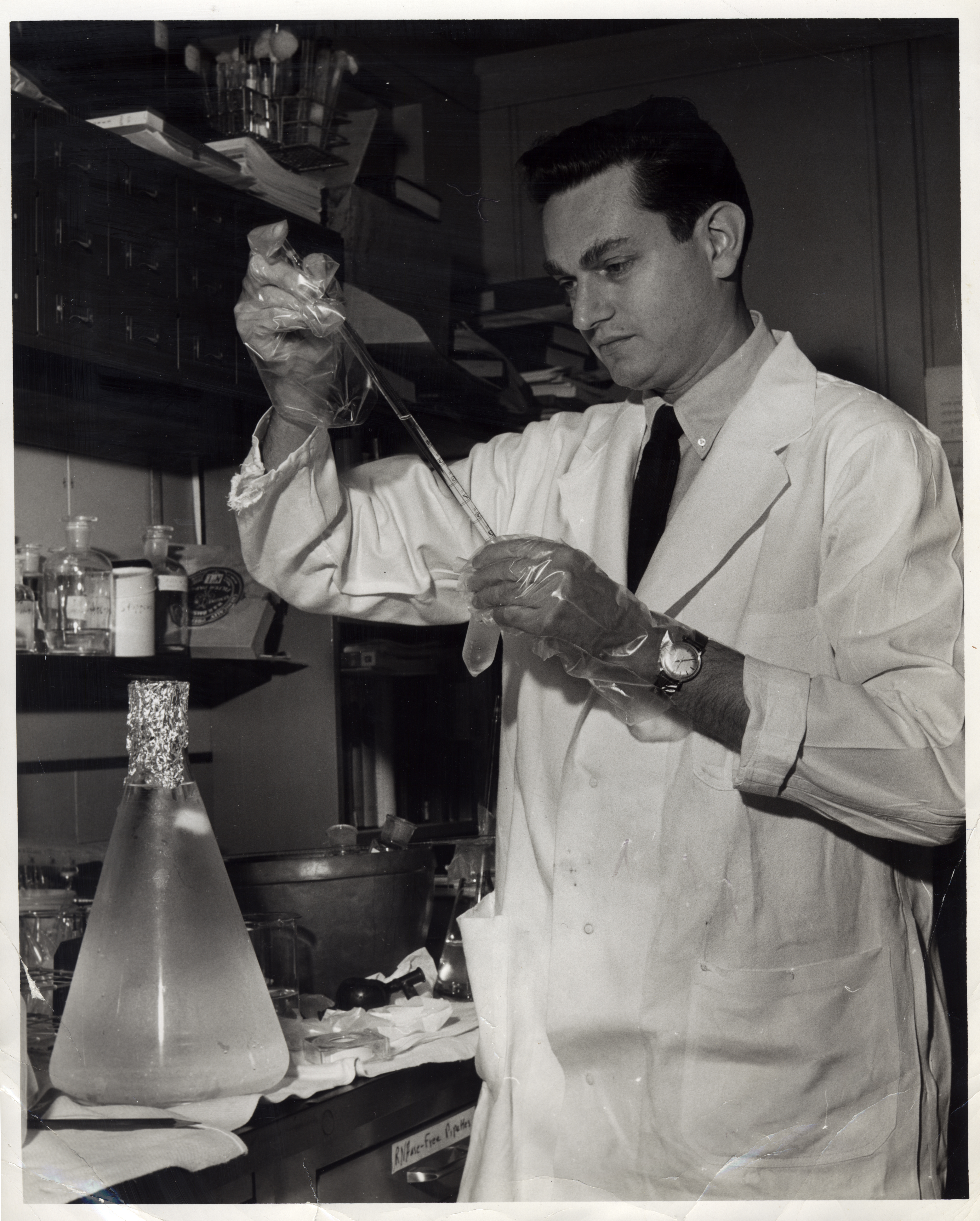 erwin chargaff experiment
