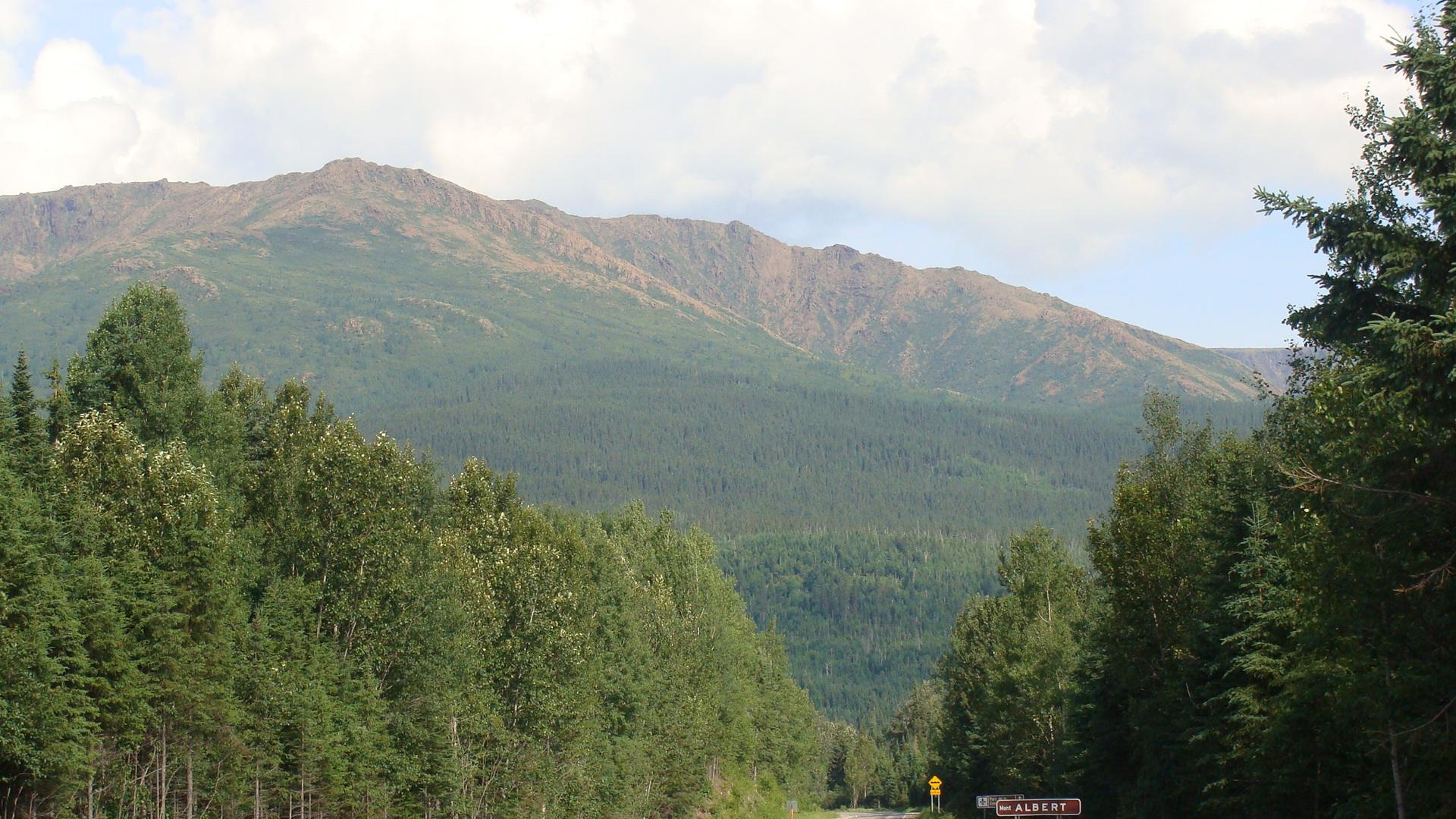 Файл:Mont Albert.jpg