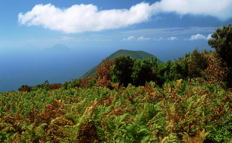 Veduta del Monte