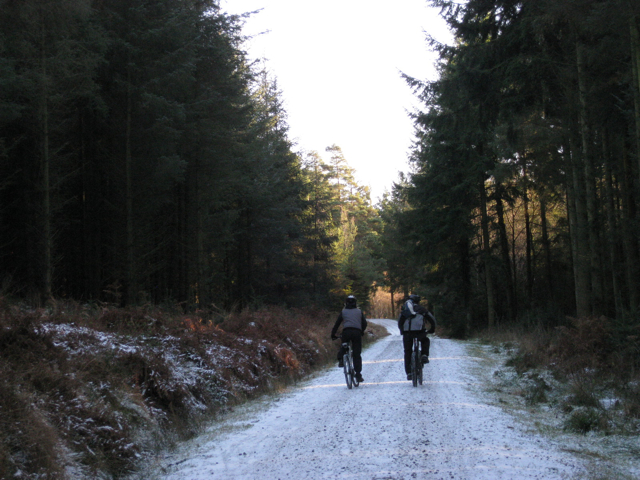 Mountain-biking couple, Haldon Forest Park - geograph.org.uk - 1652002