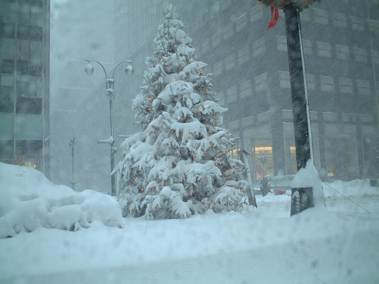 New York Weather Snow