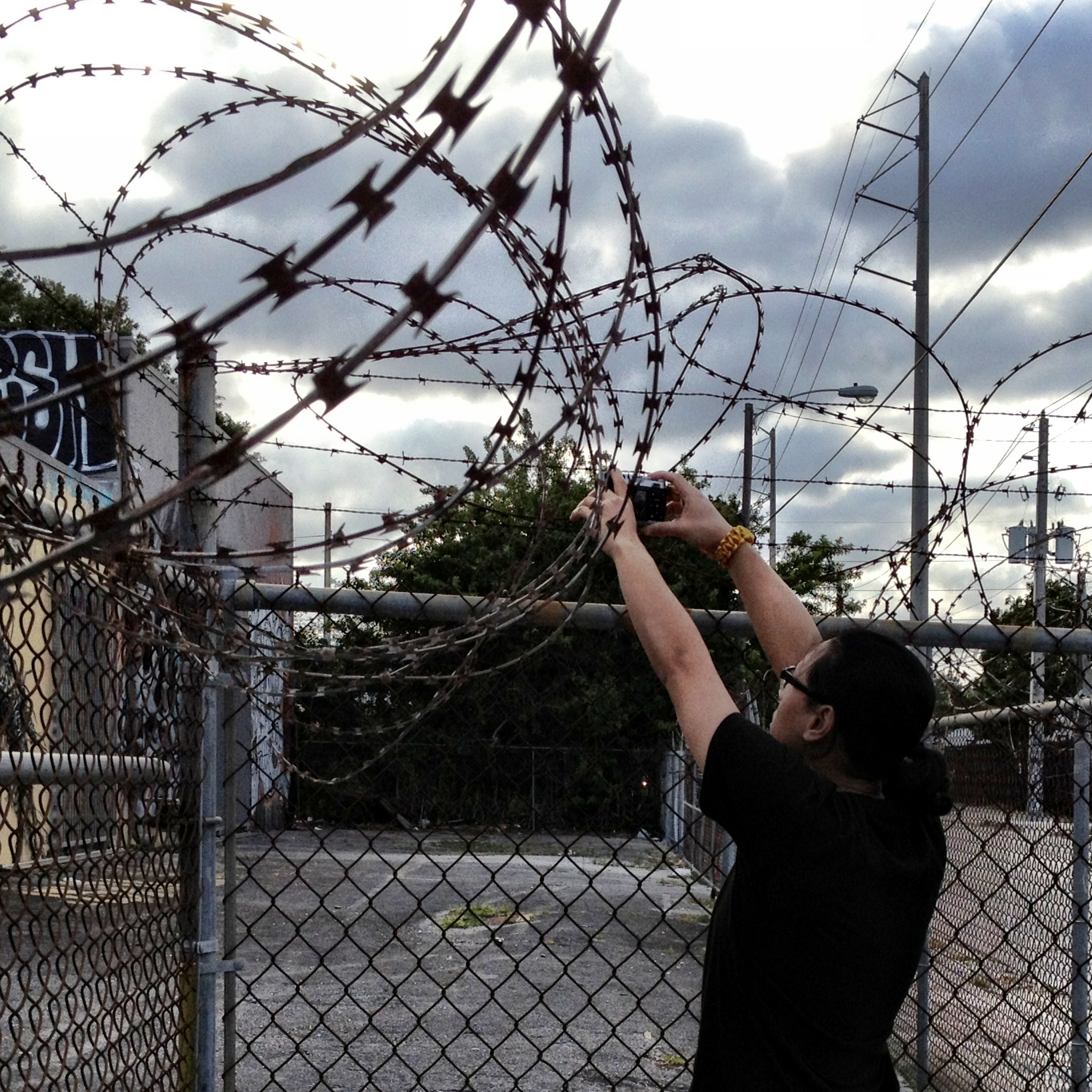 File:Over wired fences of Wynwood (8570071712).jpg - Wikimedia Commons