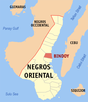Map of Negros Oriental showing the location of Bindoy
