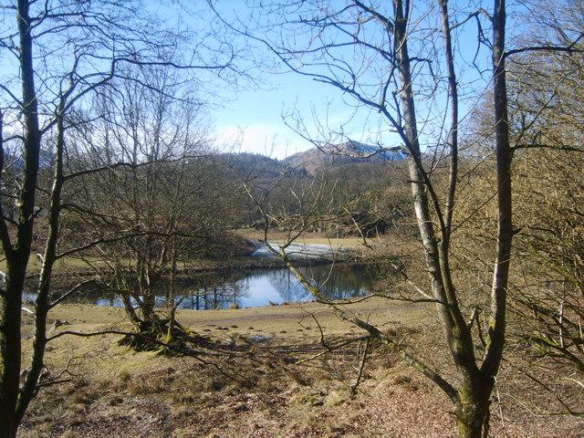 River Brathay - geograph.org.uk - 1735981