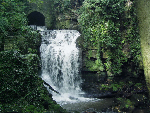 The Wensley waterfall - geograph.org.uk - 347136