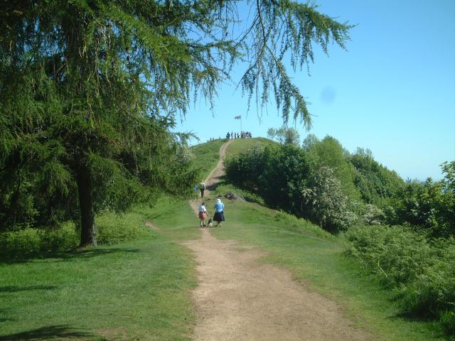 Thirdsland and Jubilee Hill on the Malvern Hills - geograph.org.uk - 3153