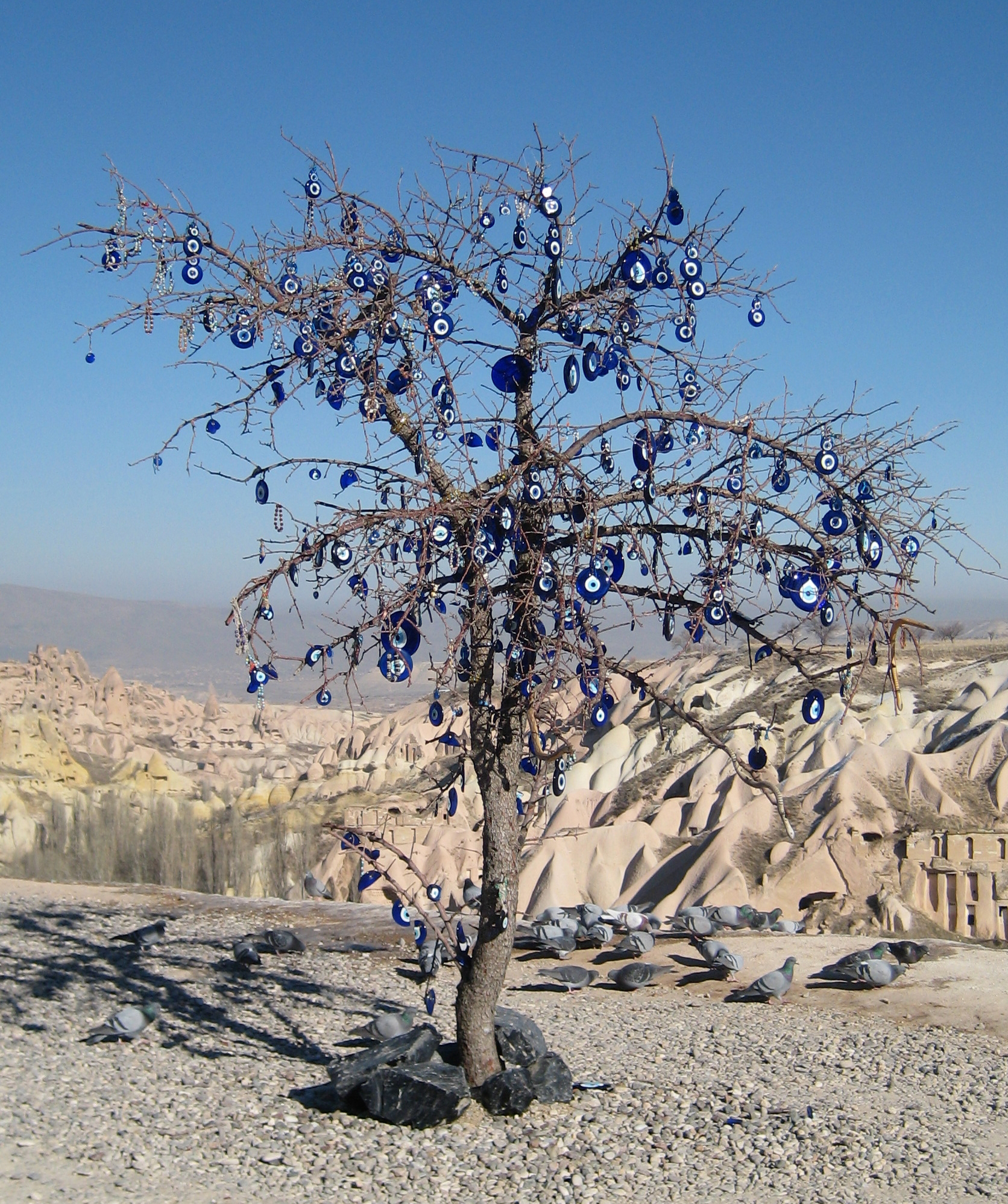 Evil eye wikipedia tree with nazars in cappadocia turkey buycottarizona Image collections