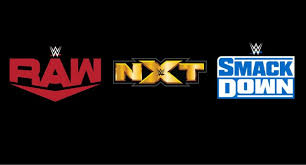 As of 2019, WWE's three primary brands are Raw, NXT, and SmackDown.Each brand features its own distinct roster, championships, and announcers.There are also two specialty brands - 205 Live and NXT UK - which are considered subsidiaries of NXT.
