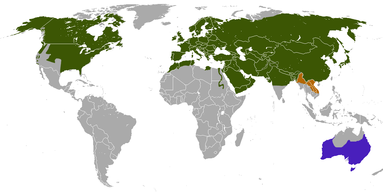Global Distribution Map