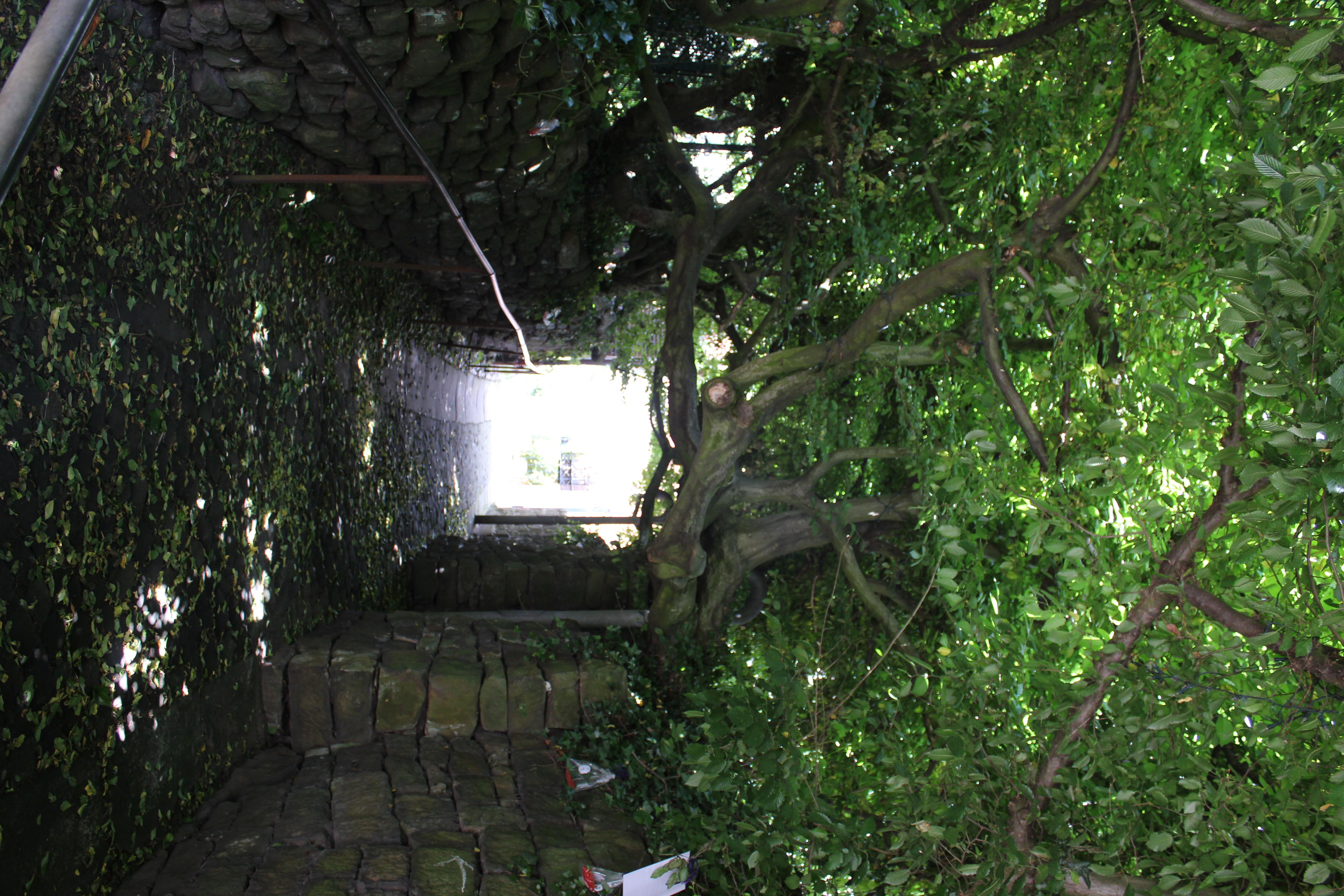 Schnell gefunden in Bad Bentheim