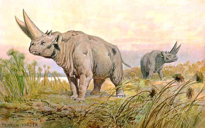 Treťohorný cicavec arsinoitherium