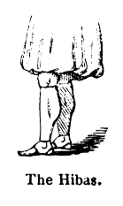 Burton Hibaz illustration.PNG
